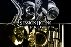 NI_Session_Horns_Pro_Visual