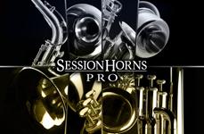 NI_Session_Horns_Pro_Visual